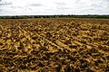 Ploughed field - geograph.org.uk - 494331.jpg