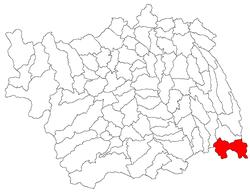 Vị trí của Podu Turcului