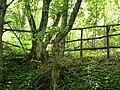 Pogris area-village Brestovo - panoramio (1).jpg
