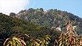Pohľad na Bokšov - panoramio.jpg