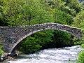 Pont de la Margineda (Santa Coloma) - 7.jpg