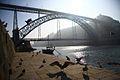 Ponte D. Luís e as gaivotas.jpg
