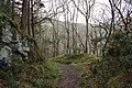 Porlock, nearing Culbone - geograph.org.uk - 358223.jpg