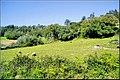 Portugal Loures Lousa (447501214).jpg