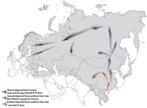 Haplogroup N-M231 - Image: Prehistoric migration routes for Y chromosome haplogroup N lineage