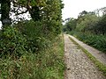 Private road to Calthorpe Broad - geograph.org.uk - 578064.jpg