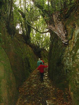 Sunken lane - Congostra da Carballa, Ribeira, Galicia, Spain