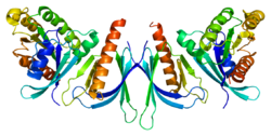Protein EXOC8 PDB 1zc3.png
