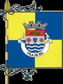 Bandeira de Vila de Rei