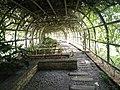 Putrajaya's Botanical Garden 14.jpg