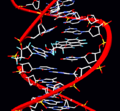 Pyrene adduct.png