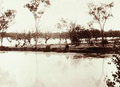 Queensland State Archives 2185 Dam on Wallam Creek Woolerina Station supplied with bore water by means of drains 1897.png