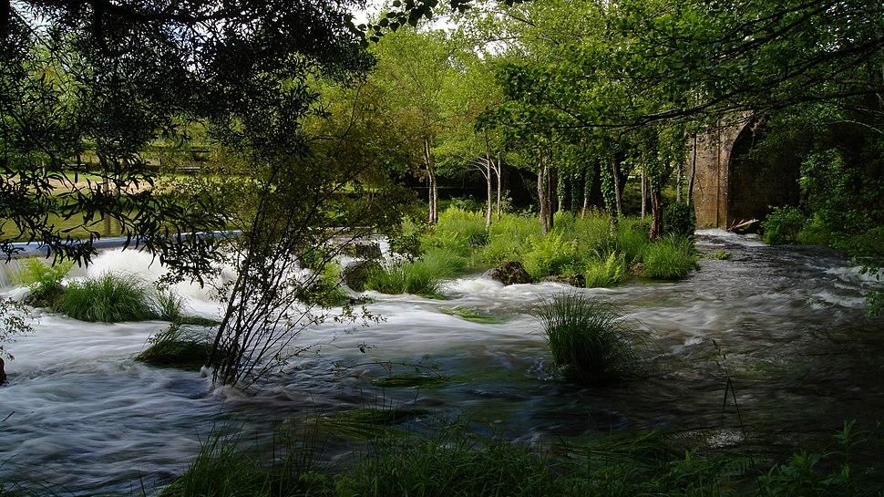 Río Verdugo - A Lama