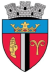 Coat of arms of Săliște