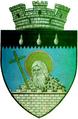 ROU SV Siret CoA.png