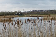 RSPB Dearne Valley Old Moor, view across a lake