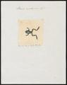 Rana malayana - 1700-1880 - Print - Iconographia Zoologica - Special Collections University of Amsterdam - UBA01 IZ11500033.tif