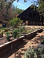 Rancho San Antonio Open Space Preserve - Deer Hollow Farm garden and hay barn.jpg