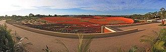 Royal Botanic Gardens, Cranbourne - Panoramic view of the Red Sand Garden, Australian Garden, Cranbourne Gardens, Victoria, Australia