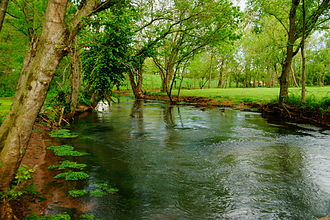 Revival of 1800 - The Red River in Logan County, KY, 2014