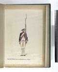 Reg. Mecklenburgsche Musketiers. 1790-1795 (NYPL b14896507-94106).tiff