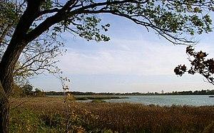Rice Lake State Park - Rice Lake is a shallow, marsh-ringed lake