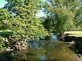 River Clwyd - geograph.org.uk - 606218.jpg