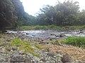 Rivière des marsouins à l'îlet béthléem - panoramio.jpg