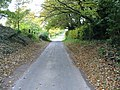 Road to Selson past Wells Farm - geograph.org.uk - 606636.jpg