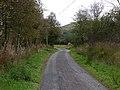 Road up Cwm Twrch - geograph.org.uk - 2081105.jpg