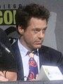 Robert Downey Jr SDCC 2009 2.jpg