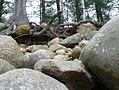 Rocks on the shore of Great Sacandaga Lake (2008).jpg