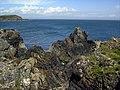 Rocky Shoreline - geograph.org.uk - 867460.jpg