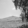Ruïne op een heuvel, Bestanddeelnr 255-2230.jpg