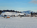 Rubi Winter 2012.jpg