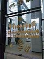 Ruhrmuseum - 17 Meter Ebene - Blätter82908.jpg