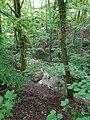 Ruisseau de Loverchy @ Parc du Val Vert @ Seynod (50884059678).jpg