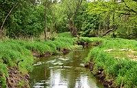 Rzeka Długa w pobliżu Ossowa.jpg