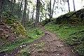 Sölden - trail in forest.jpg
