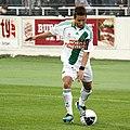 SC Wiener Neustadtvs SK Rapid Wien 20110723 (40).jpg