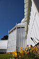 San Francisco Conservatory of Flowers-38.jpg
