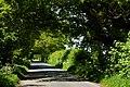 Sand lane North Cliffe IMG 3484 - panoramio.jpg