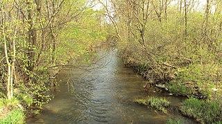 Sandy Creek (Michigan)