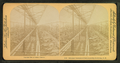 Saranac Cucumber Conservatory, Littleton, N.H, from Robert N. Dennis collection of stereoscopic views.png
