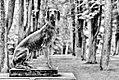 Sascha Grosser - Watching dog1 f1024 hdr sw mod4.jpg