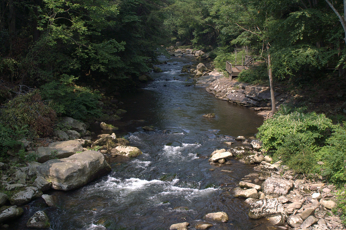 Savage river maryland wikipedia for Trout fishing maryland