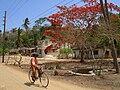 Scene in Mikindani, Tanzania.JPG
