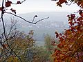 Schönaich im Nebel - panoramio.jpg