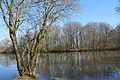 Schleswig-Holstein, Kellinghusen, Naturerlebnisraum Rensinger See NIK 1779.JPG