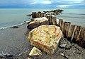 Scogli sul mare di Rosignano.jpg